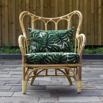 Monstera Chair 2