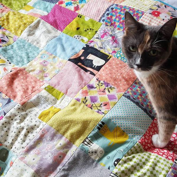 Minette with quilt