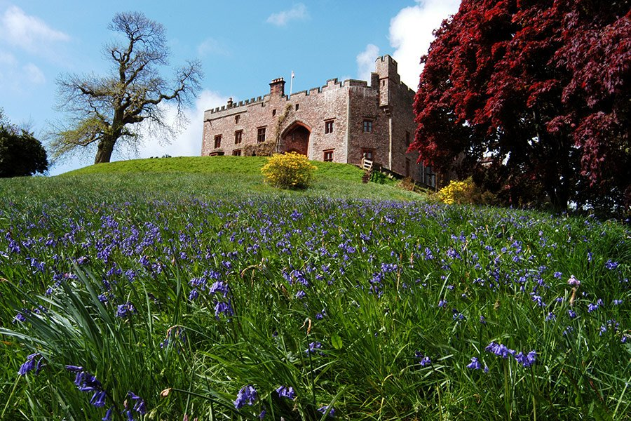 muncaster castle with bluebells on the bank